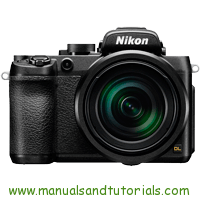 Nikon DL24-500 Manual And User Guide PDF